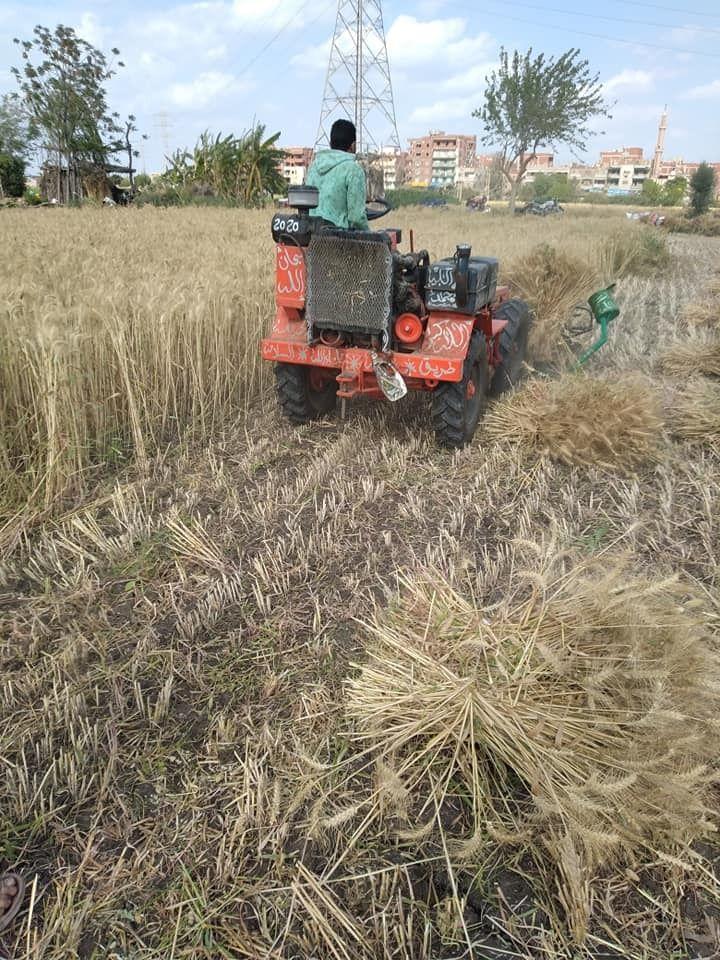 المعدات تنطلق بحصاد القمح
