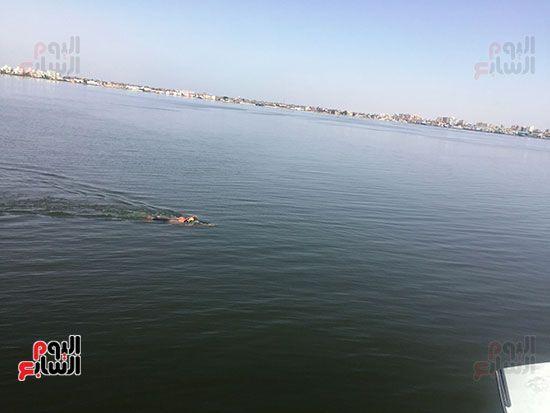 السباح العالمى سيد الباروكى (14)