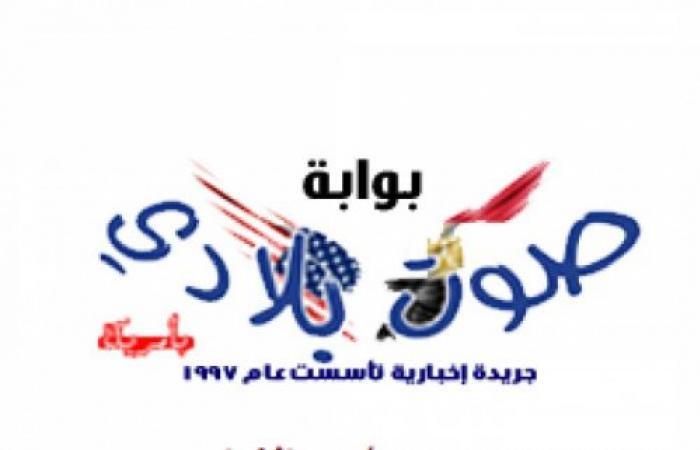كاميليا الدفراوى ابنة علا غانم وعريسها فى حفل الزفاف