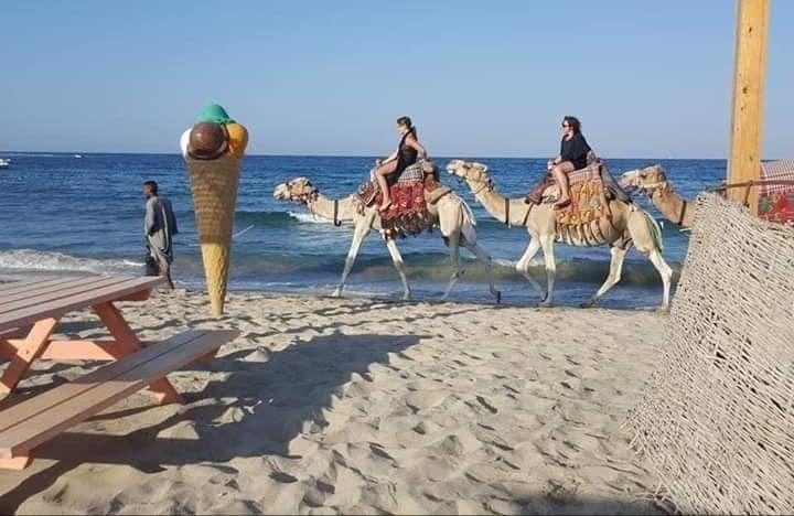 البحر الأحمر جاهزة لاستقبال السياحة الروسية (3)