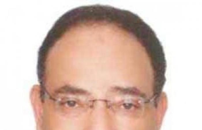 د. بهى الدين مرسى يكتب: الفرق بين العقل الفردي والعقل الجمعي